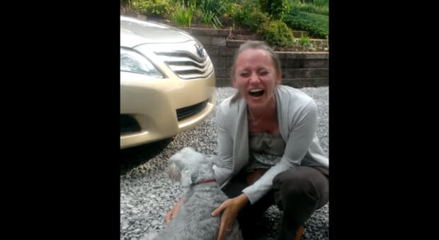 This Dog Hasnt Seen Her Owner For Years What Happens Next Is - Dog passes owner returns 2 years