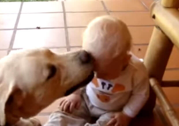 baby-with-lab-2