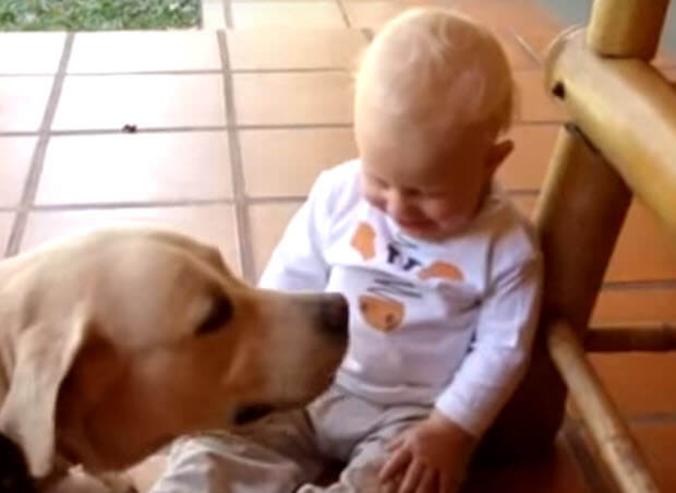 baby-with-lab