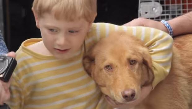 marine-reunites-with-dog-he-saved