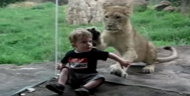 kids-at-zoo-3