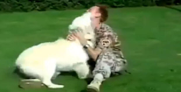 superb-dog-reunions-2