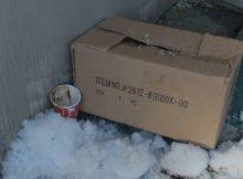 dog left die frozen box