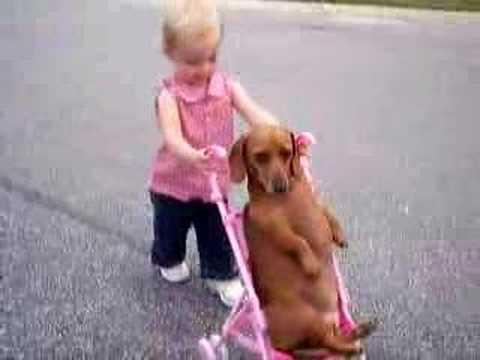 dog stroller girl