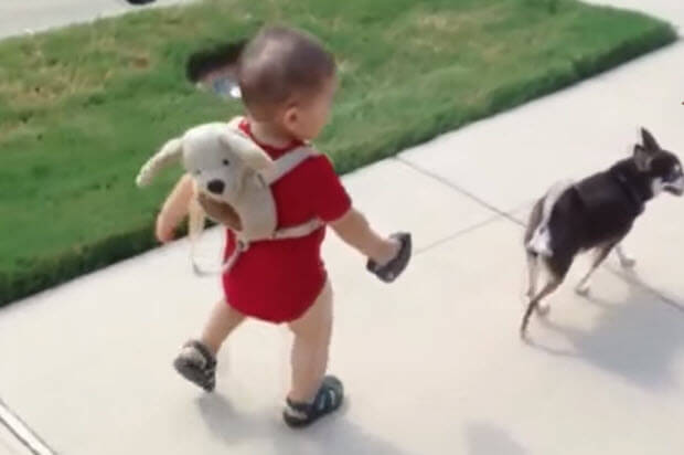 babies-with-small-dogs
