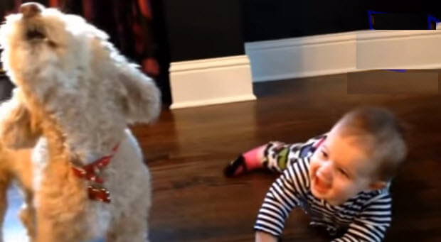 babies-with-their-pet-dogs