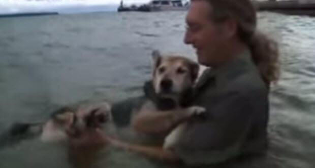 man-loyal-to-his-sick-dog