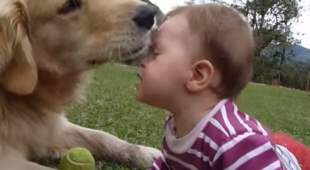 huge-dog-with-tiny-baby