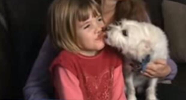 dog-saves-girls-life-2