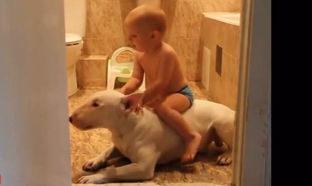 babies-with-huge-dogs-playing-2