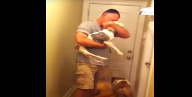 dogs-wecoming-soldier-home-special-need