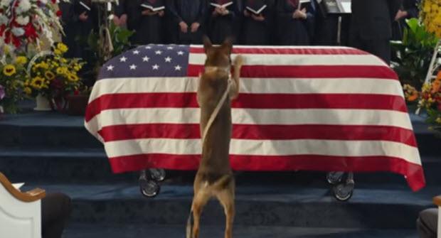 max dog movie soldier ptsd